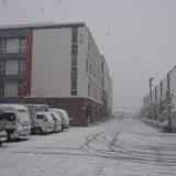 新人大会第2節、大雪で順延に。